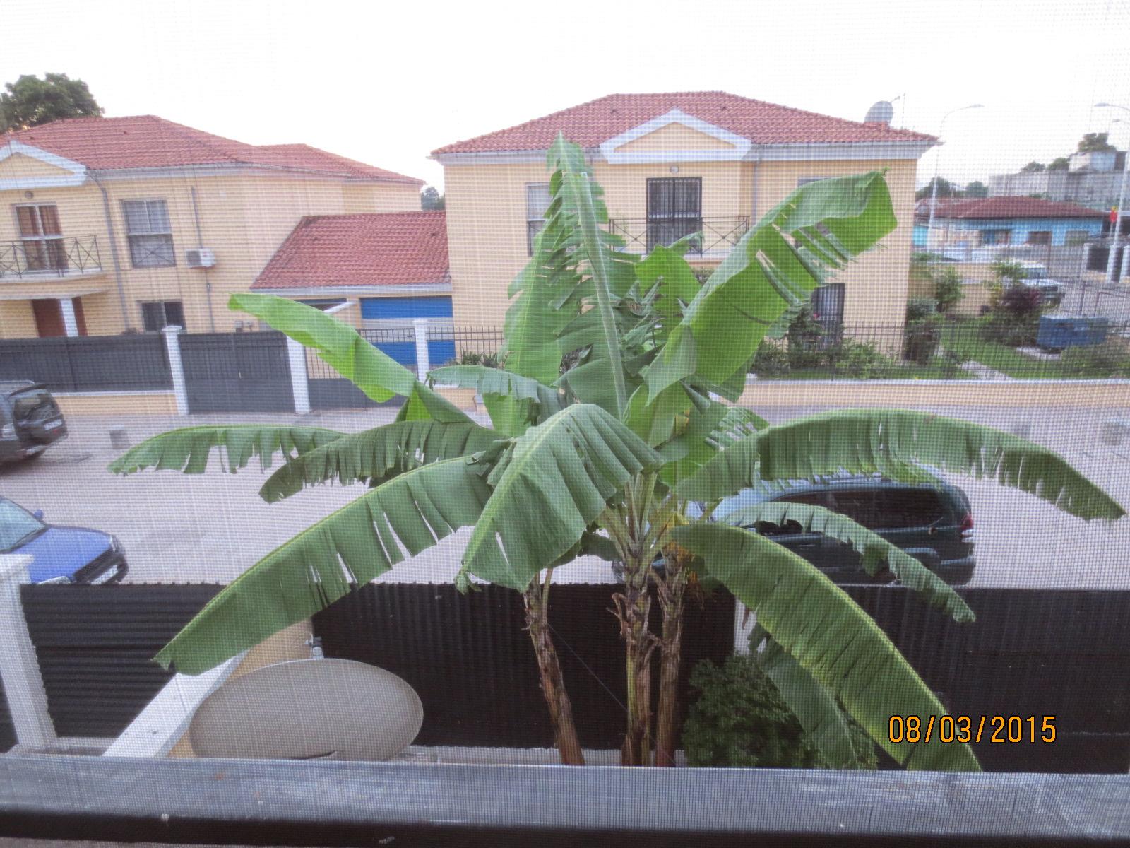 Veiw from Marie´s balcong